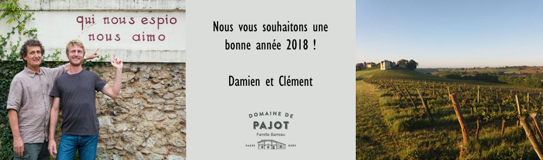 voeux 2018 francais copie